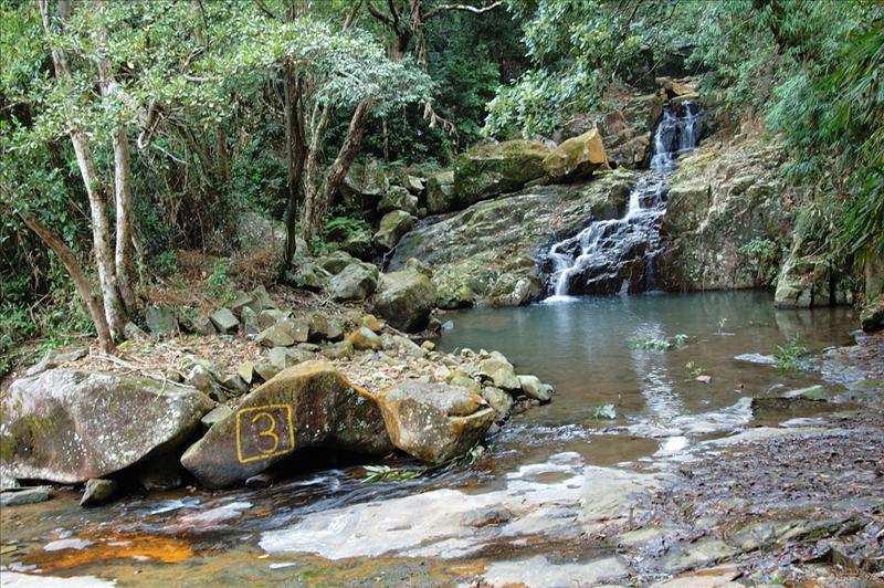 小型瀑布溪流及水潭 a small cascade and pool