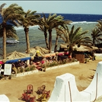 dahab, egypt may2000