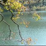 慈湖 (11).JPG