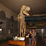 Natural History Museum, Ulaanbaatar, Mongolia, 1.8.2010