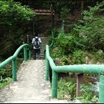Pak Shek Kiu Trail 往白石橋徑走