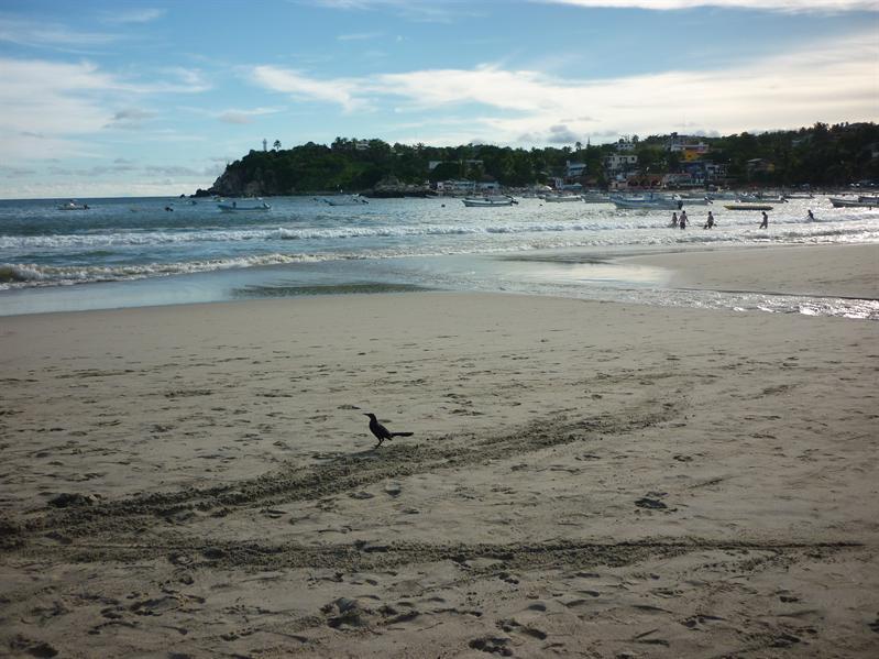Puerto Escondido's main beach