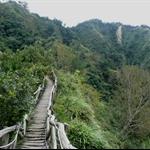 頭嵙山 (103).JPG