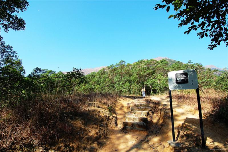 Going up the stone steps of Lantau Trail Section 2 踏上鳳凰徑第2段