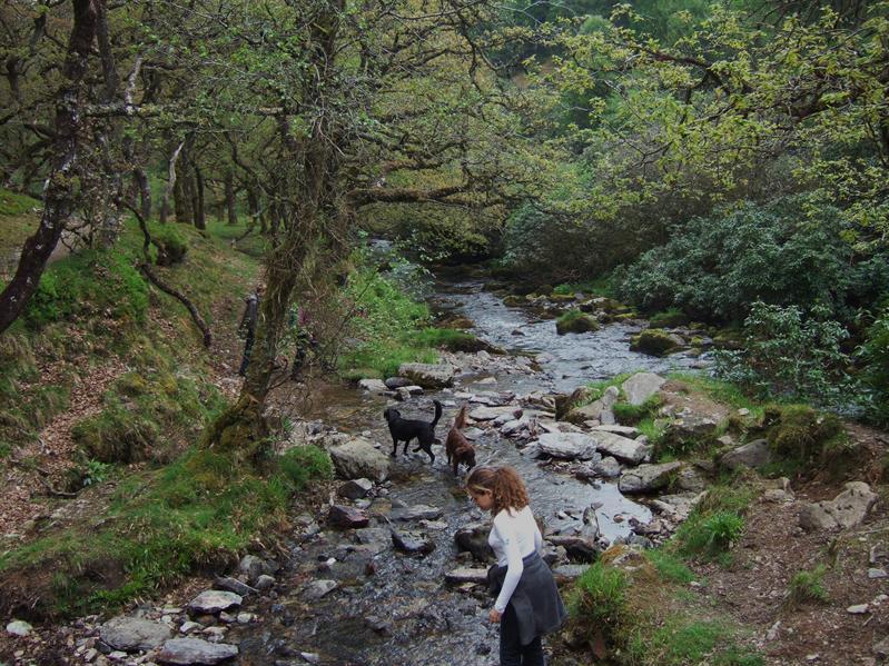 The Doone Valley
