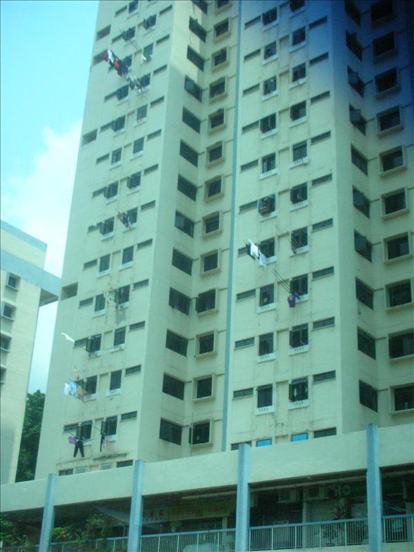 牛車水(Chinatown, Singapore)-萬國旗