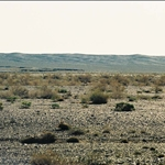 35卡拉麥里自然保護區.jpg