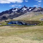 Pucacocha ausangate Peru
