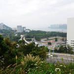 麗坪路附近山徑回望中文大學校園及吐露港