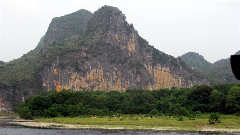 "scenes of ""Lijiang River"" ((漓 江 ) cruising - The painted hill of ""Nine Horses"" ( 九 馬 畫 山 )-- can you find the 9 horses ?"