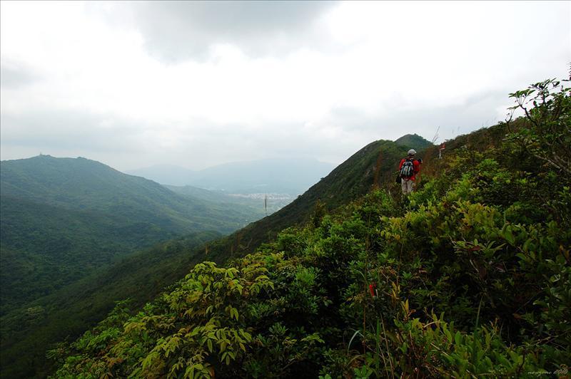 山徑左邊的山勢陡峭