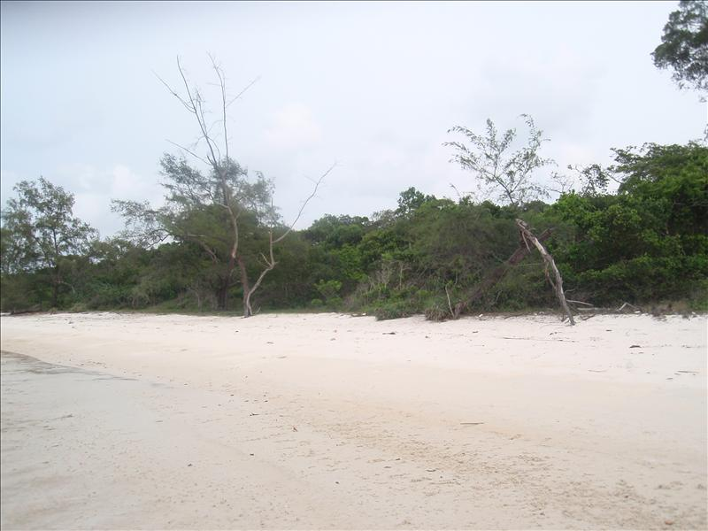 The eastern beach