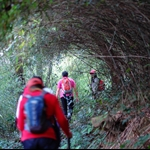 20120212 大腦茅坪落西貢 Tai Lo Ancient Trail to Sai Kung