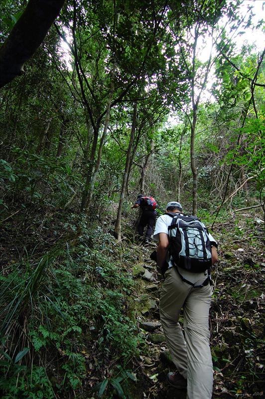 石芽棧道 Shek Nga Trail
