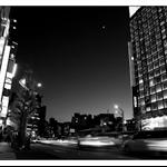 20091228-IMG_8713.jpg