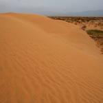 Tengeli Desert(腾格里沙漠),Inner Mongolia(内蒙古),China