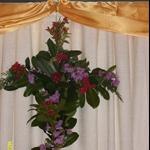 ALIM3891.JPG  Inside flower cross