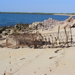 Crocodile Trap, Honeymoon Beach