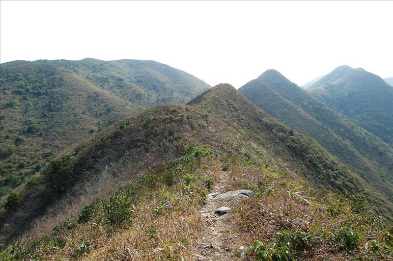 起伏不斷的石芽山南峰及遠處的水牛山