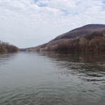 Juniata River 3-21-2010