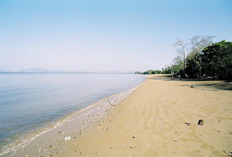 หาดบนเกาะกลาง