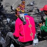 TALA part 45,La Paz