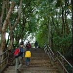 DSC_2942 巴士總站旁步上樓梯.jpg