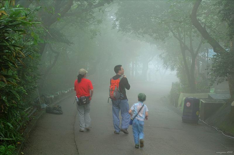 接上砵甸乍郊遊徑