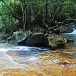 DSC_4835 薑花澗的小型瀑布及水潭.jpg