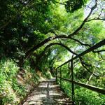 安達臣徑 Anderson Trail