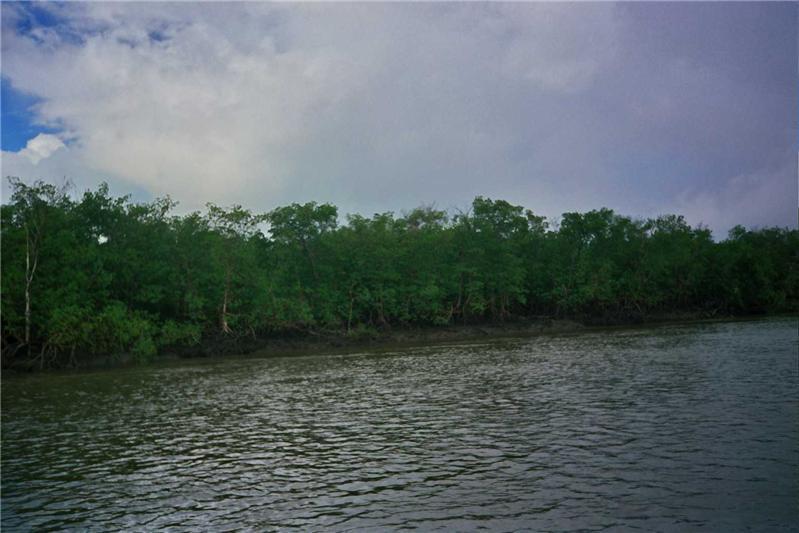 Cerca de Aracajú
