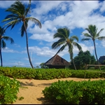 Hawai'i - Summertime