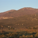 View of Pelion.jpg