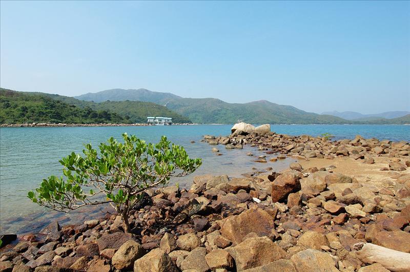 海下灣海岸公園 Hoi Ha Wan Marine Park
