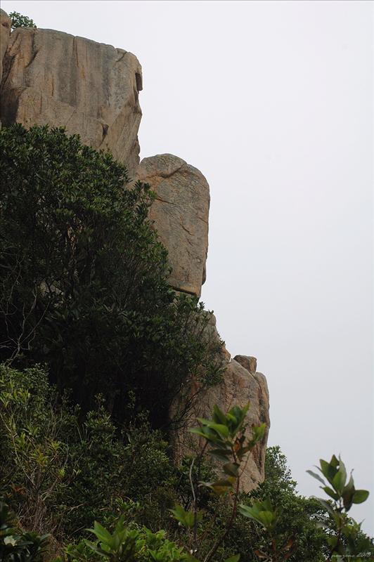 徑旁佈滿不少怪石