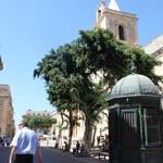 2012 St. Julians - Malta (109).JPG