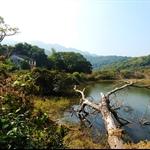 20110123 香港國家地質公園 ─ 荔枝窩自然步道 Lai Chi Wo Nature Trail