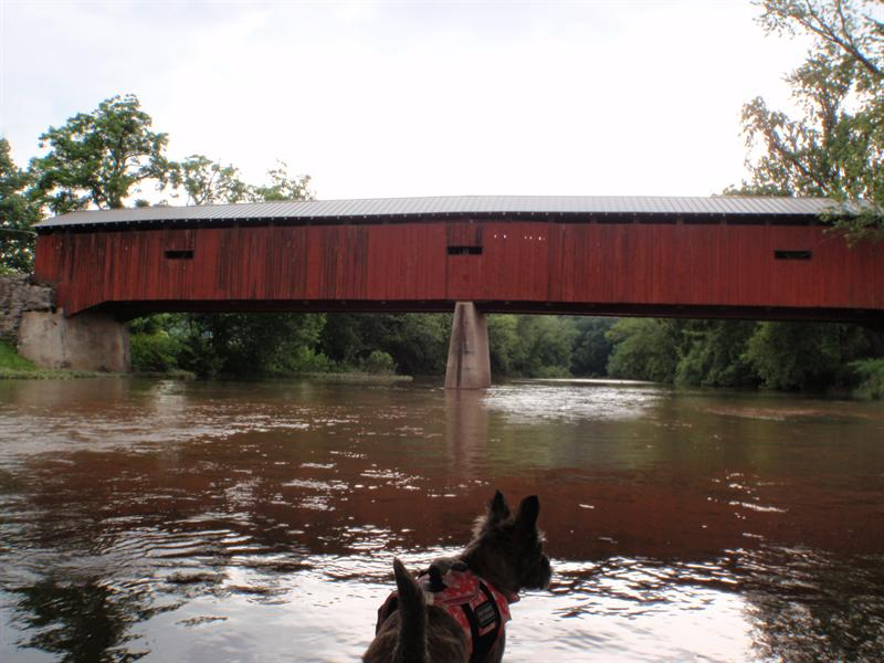 Upstream Dellville Covered Bridge
