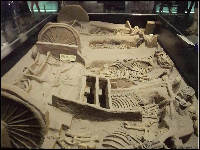 埋葬坑,都是馬的骨骼