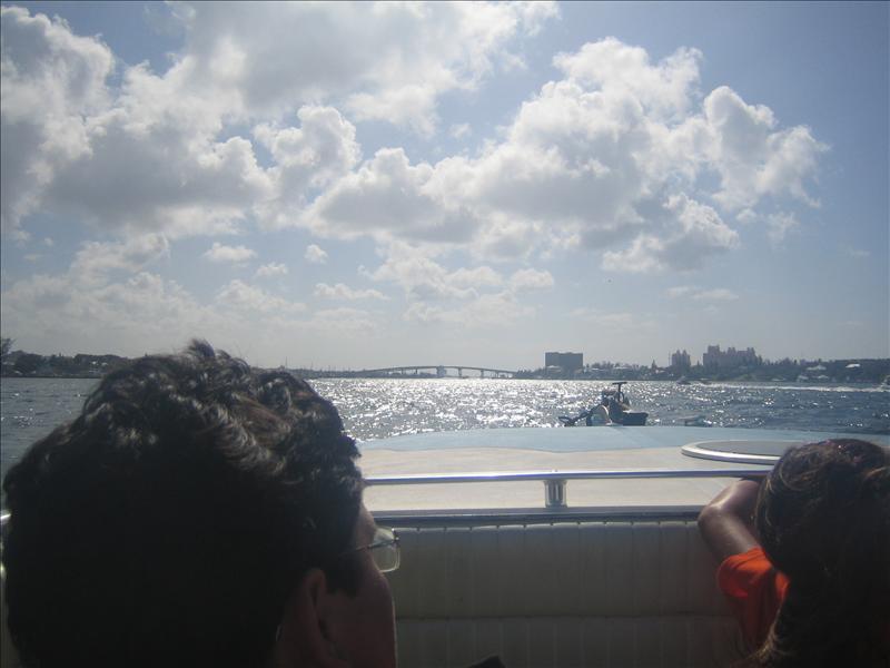 Back to Paradise Island