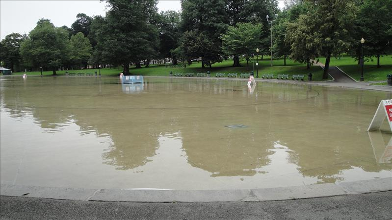 Boston's 'Frog Pond' where dog owners can let their dogs play freely in the water.