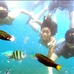 Redang - A Trip Underwater