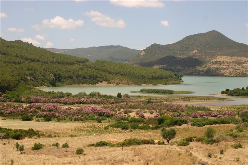 Dam built lake