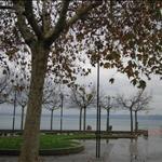 Trevignano  - Lago di Bracciano