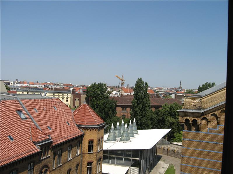 Atop the Synagogue