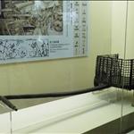DSCF0101