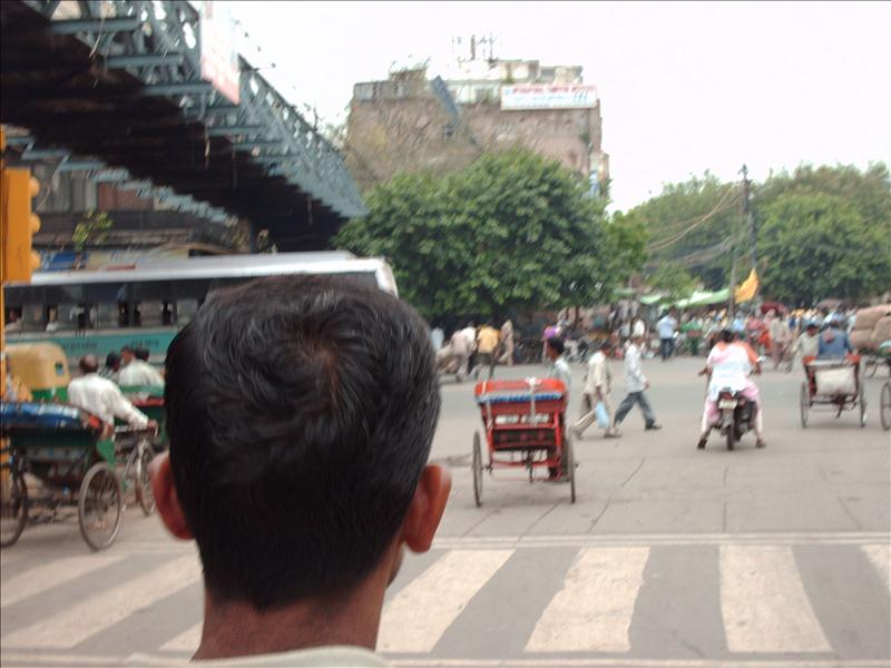 A view from the rickshaw (and our driver's head)