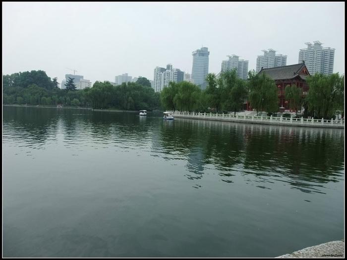 公園裡的湖還可以踩船耶,非常大。