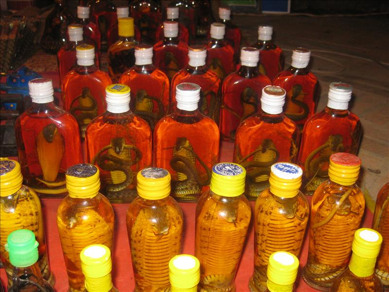Cobra snake in Lao-Lao bottle (rice alcohol) - Luang Prabang (Laos)