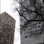 chicago 071.jpg